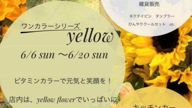 yellow 黄色